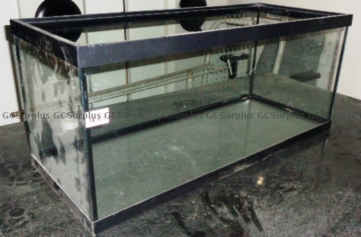 Picture of 20 Gallon Glass Aquariums
