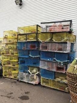 Photo de Casiers à homards